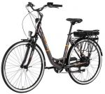 EcoBike City L Grey 250W